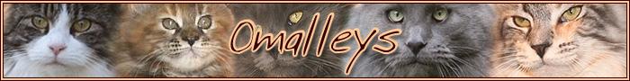 omalleys Logo